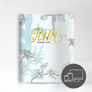 The Book of John Experience Guide (Digital Version)