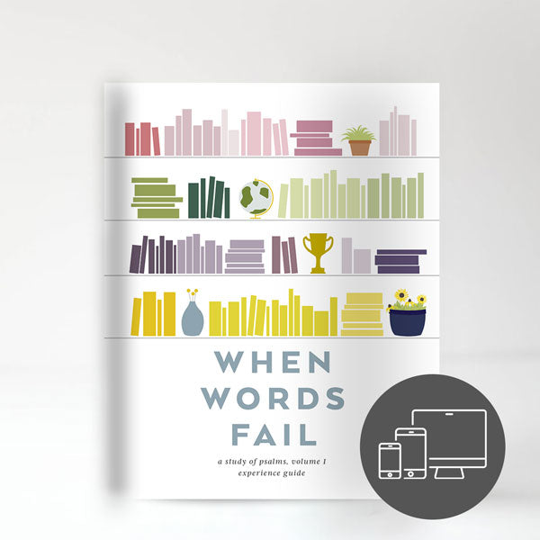 When Words Fail Experience Guide (Digital Version)