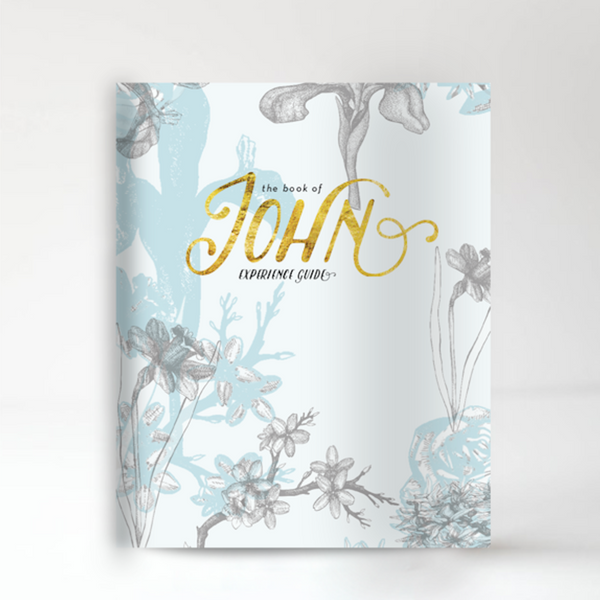 The Book of John Experience Guide