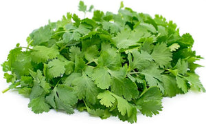 Cilantro, Produce, Wholesale