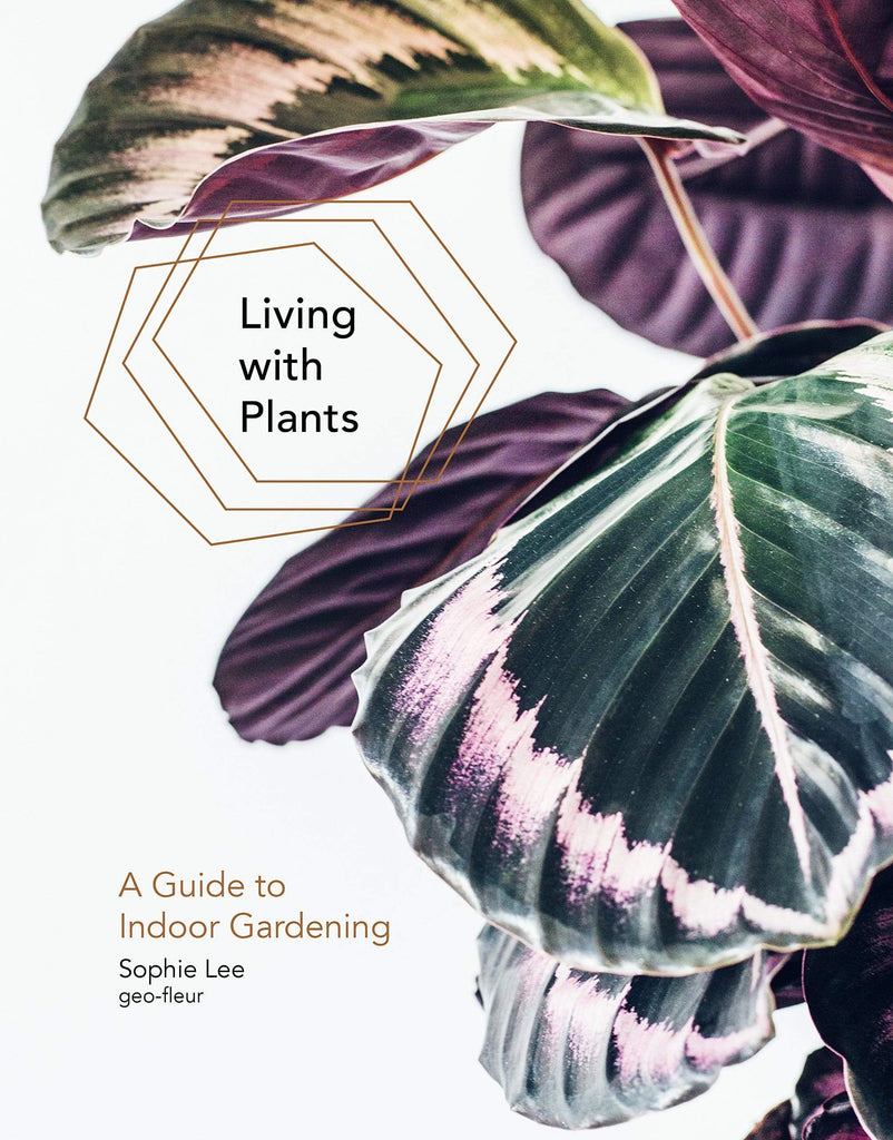 Living With Plants: A Guide To Indoor Gardening - LOCAL FIXTURE