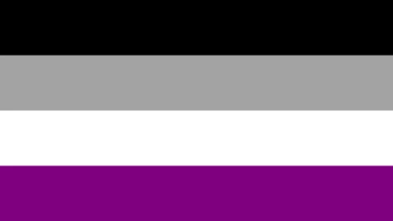 LGBTQ Asexual Pride Flag 3'x5' with Grommets