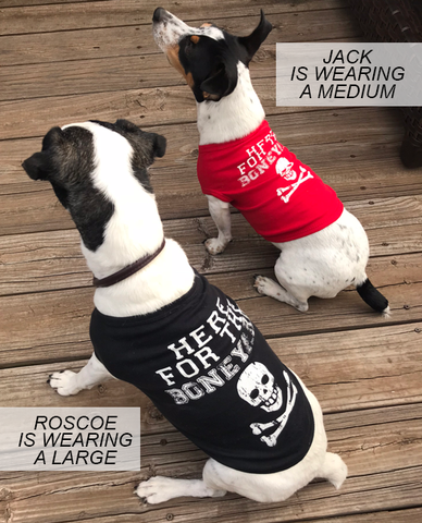 Here for the Boneyard Nebraska Dog Shirt Doggie Models