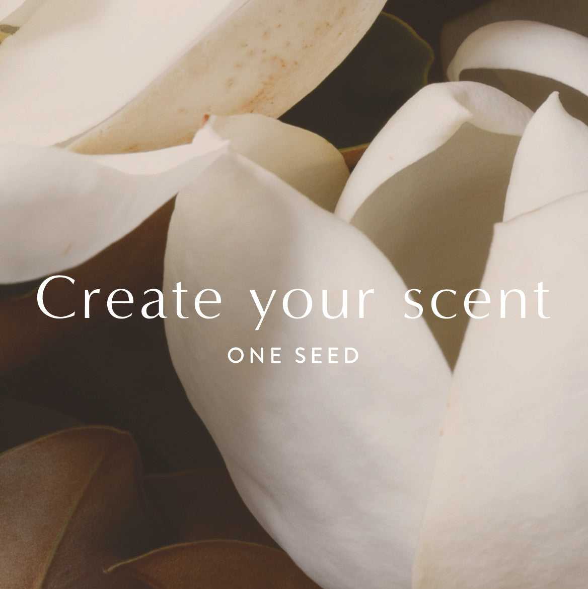 one seed scent bar custom bespoke organic natural perfume gift card