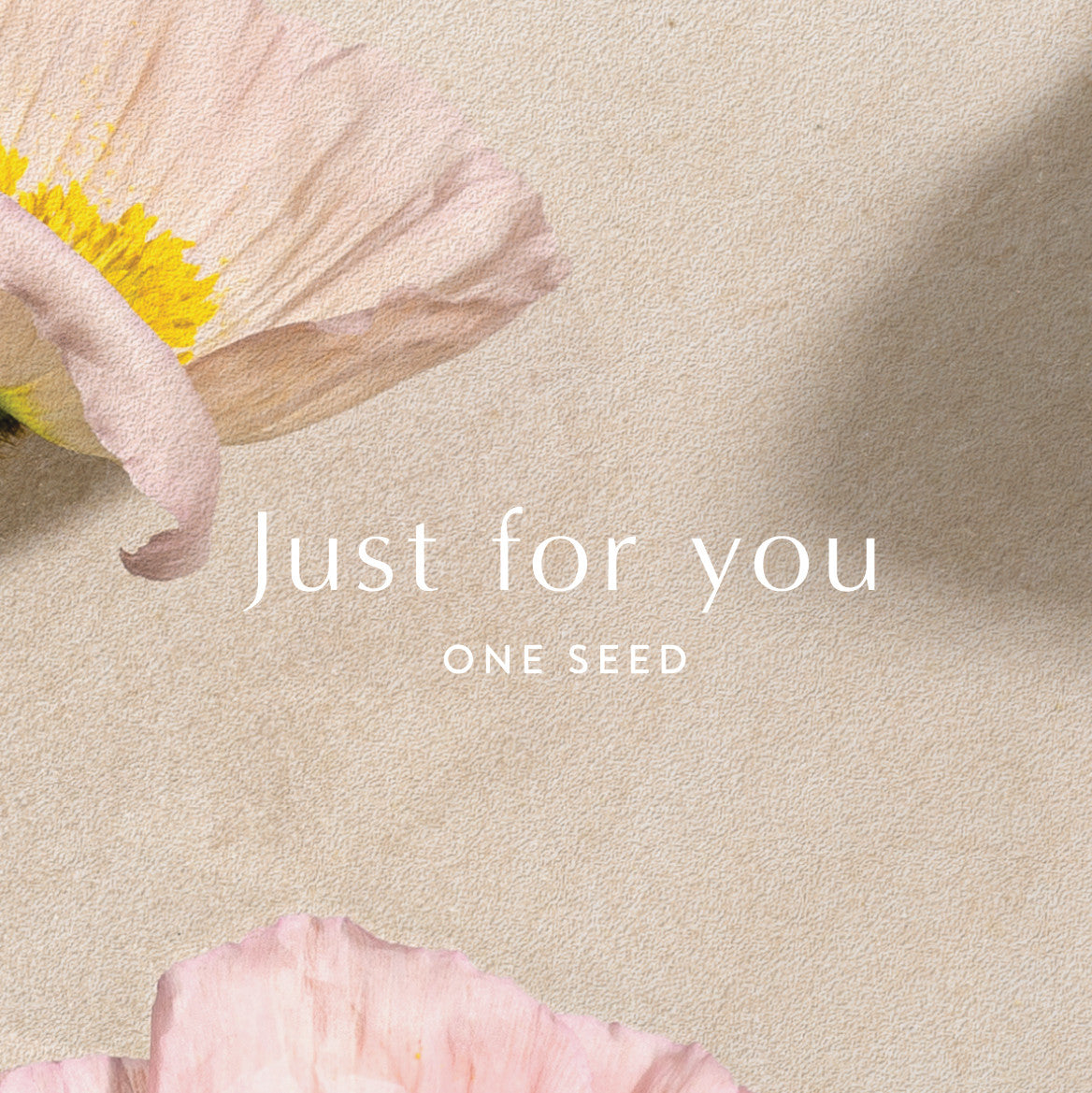 one seed natural organic perfume gift card