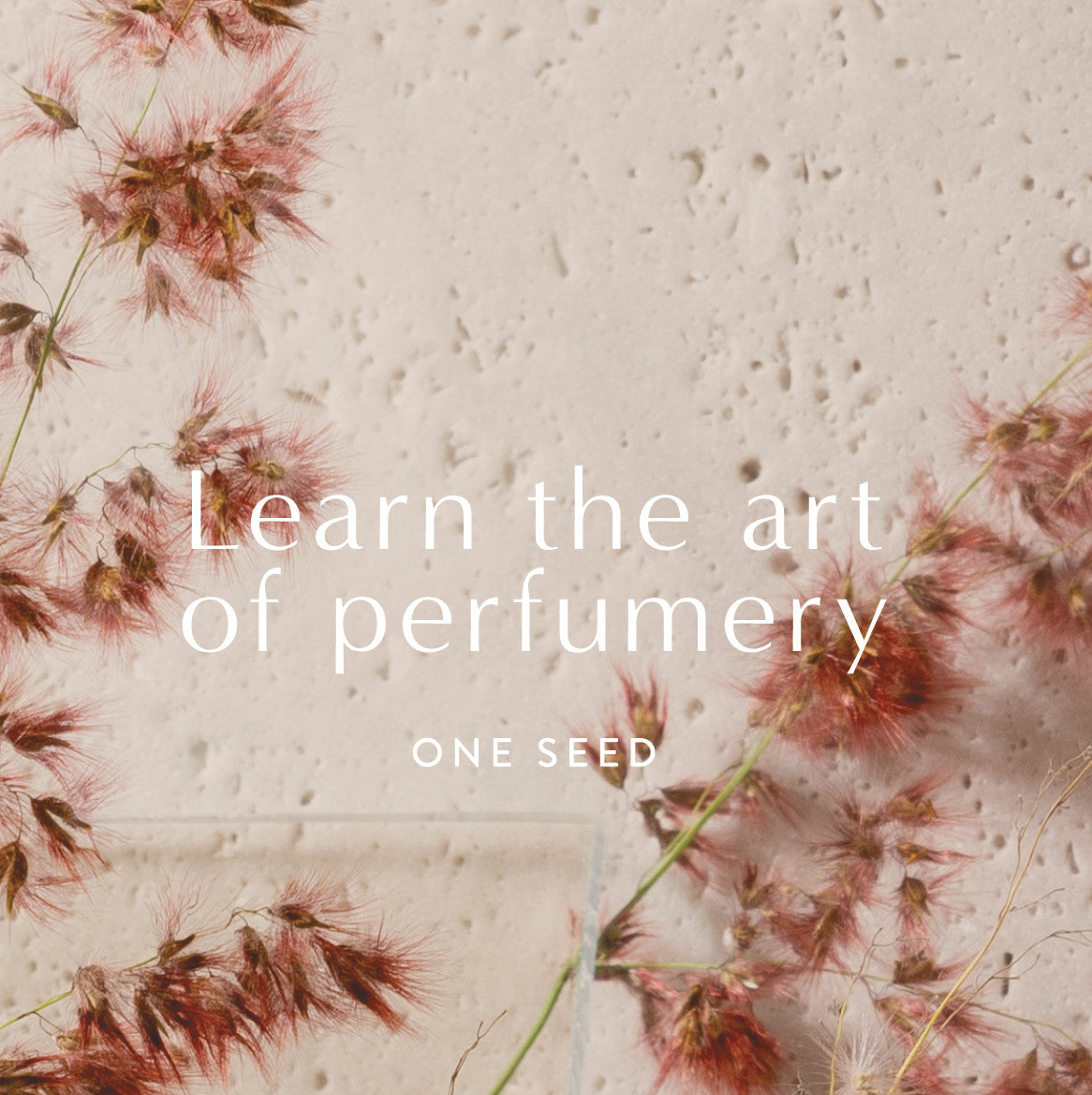 one seed perfume masterclass class training workshop gift card
