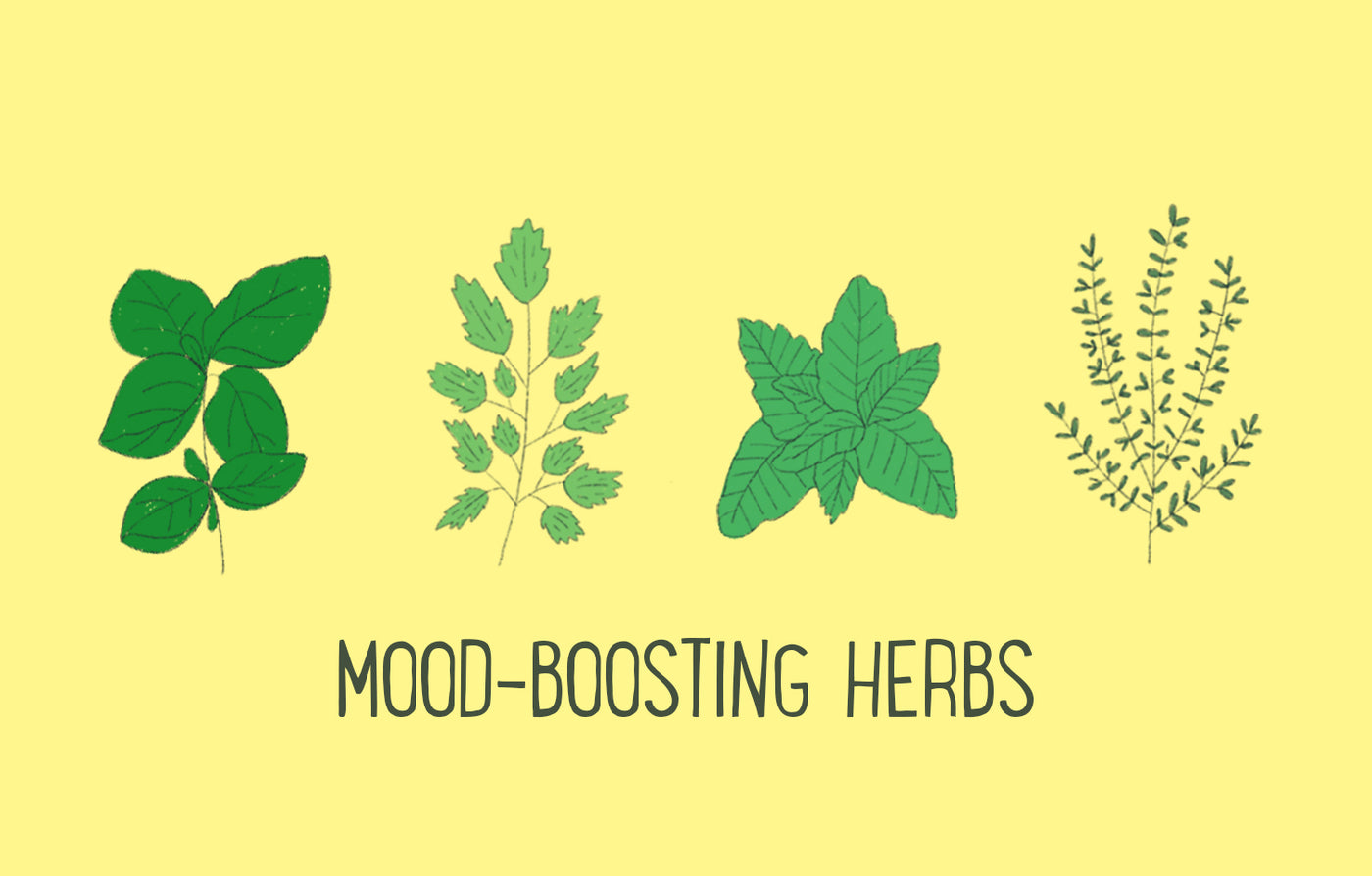 Herbs for Happiness