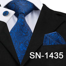 Load image into Gallery viewer, Luxury Silk Paisley Ties