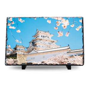 Himeji Castle With Spring Cherry Blossoms, Japan cmzart
