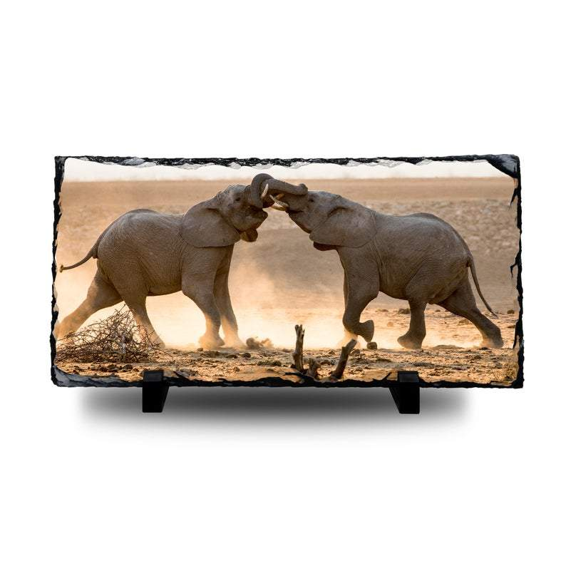 Wild Africa: Two Elephants Collide - Large Rock Slate cmzart