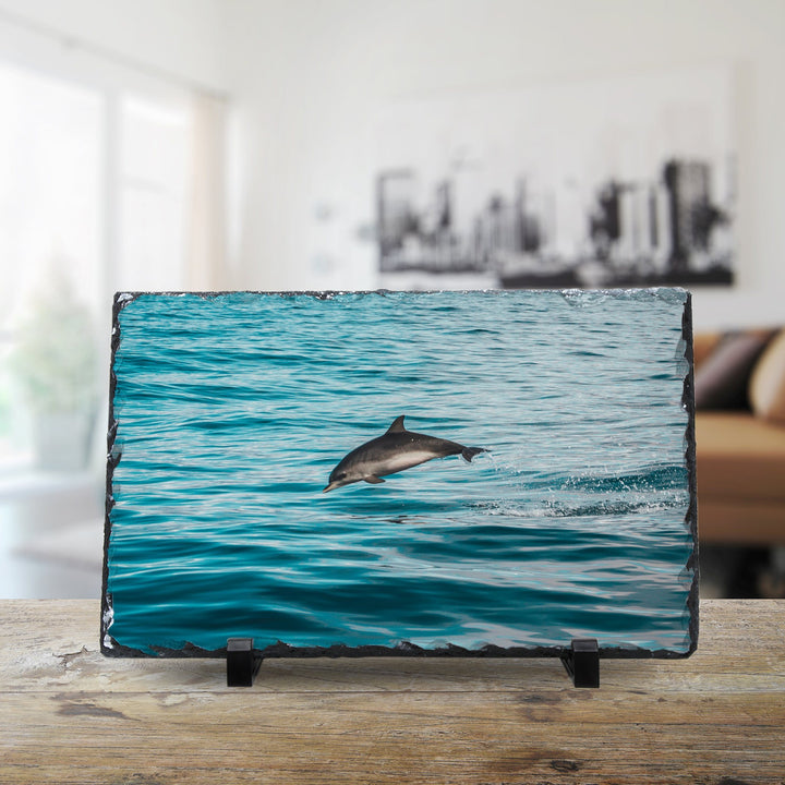 YOUNG WILD AND FREE DOLPHIN cmzart 20 x 30 cm