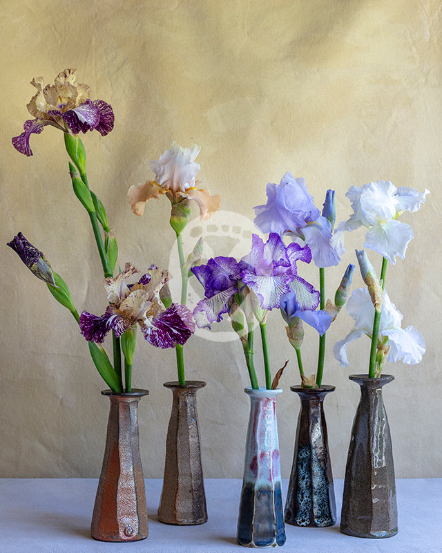 Bearded Iris Wood Fired Pots #5764
