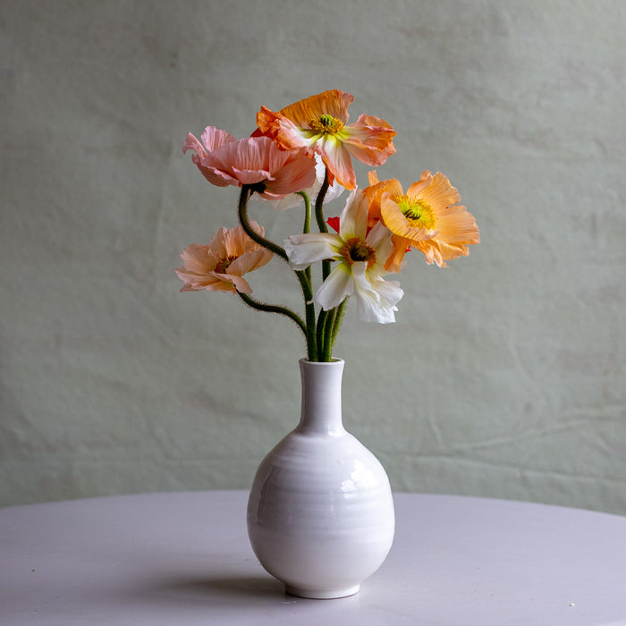 Whimsical Vases