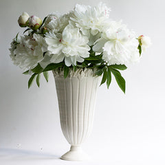 Narrow Ruffle Vase