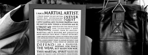Get the Manifesto of the Martial Artis NOW!
