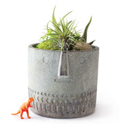 Terrarium Planter Pot - Face Planter