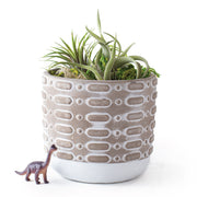 Terrarium Planter Pot - Option D