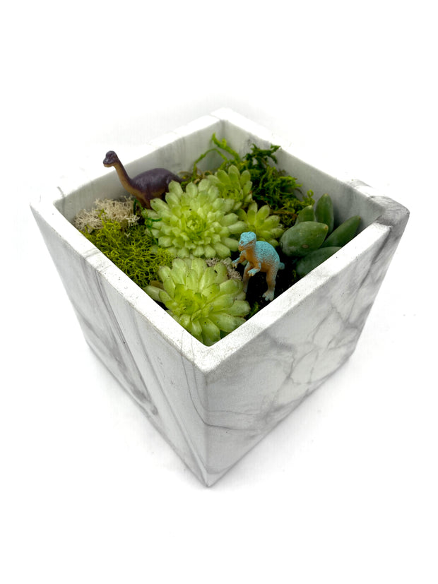 Terrarium Square Marble Kit