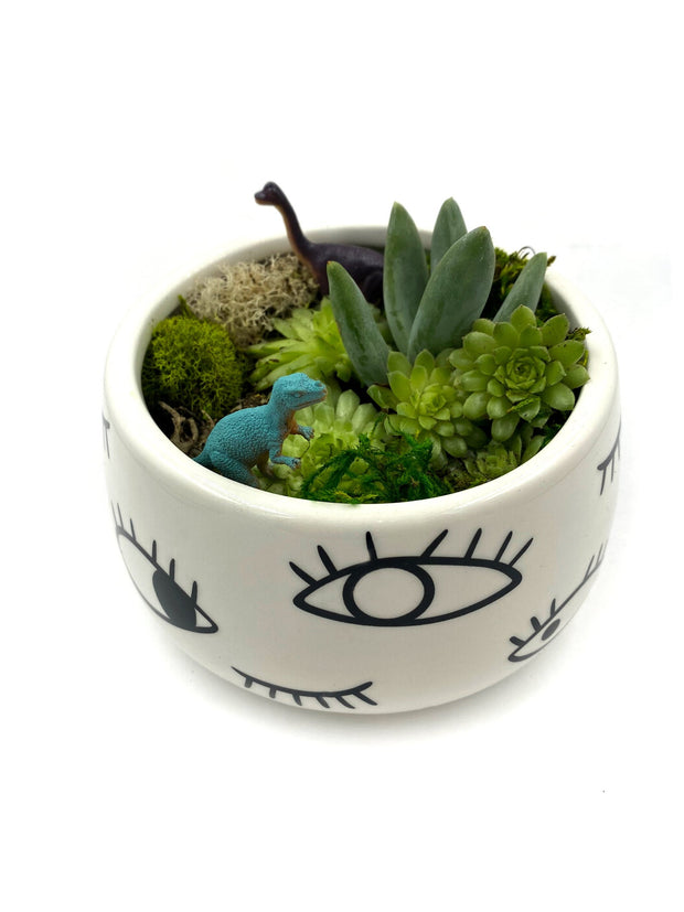 Terrarium Planter Kit (Eyes)