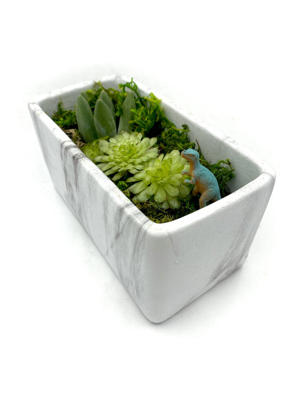 Terrarium Rectangle Marble Kit