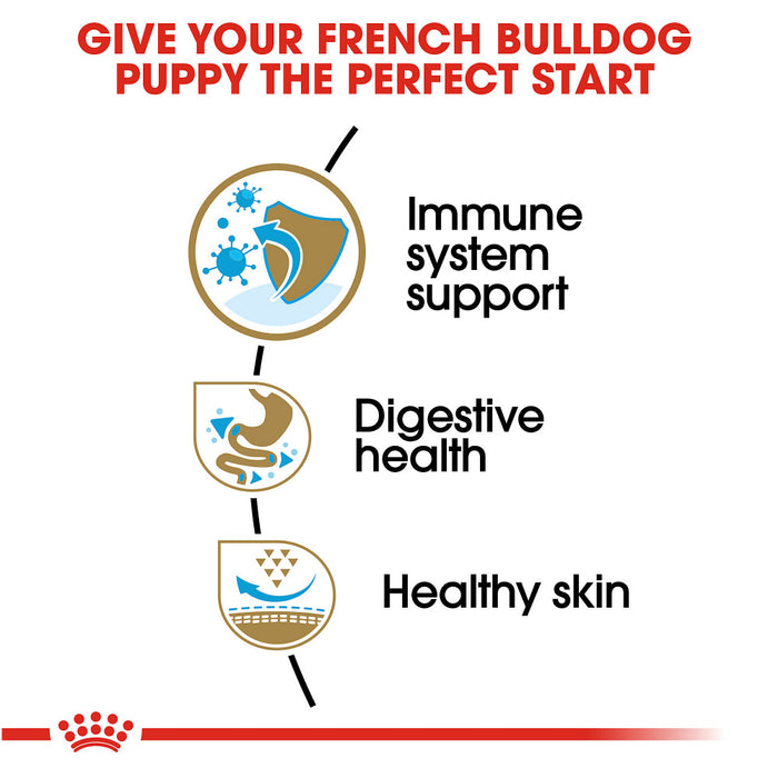 Royal Canin Breed Health Nutrition French Bulldog Puppy Recipe Dry Dog Food