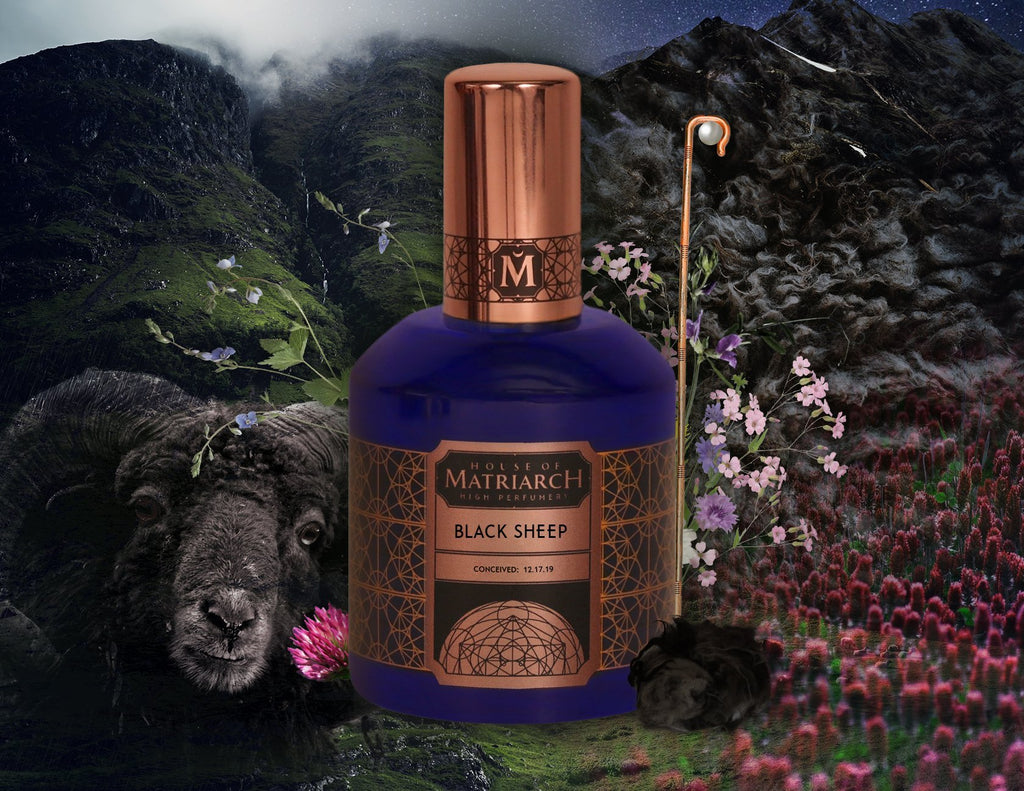 House of Matriarch - SEATTLE, WA - Natural, Organic, Vegan, Artisan & Niche High Perfumery BLACK SHEEP - Natural Costus High Perfumery
