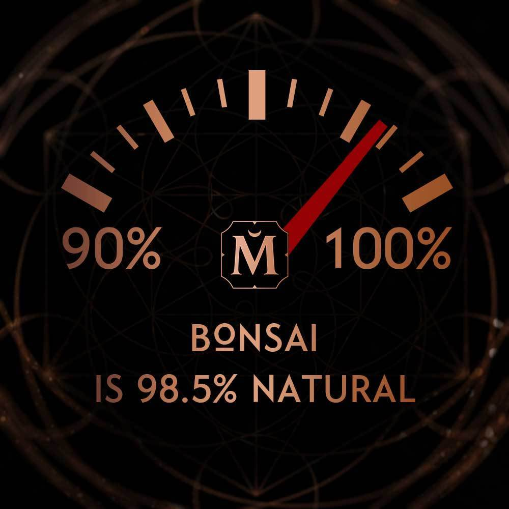 House of Matriarch - SEATTLE, WA - Natural, Organic, Vegan, Artisan & Niche High Perfumery BONSAI - GREEN IS THE NEW BLACK