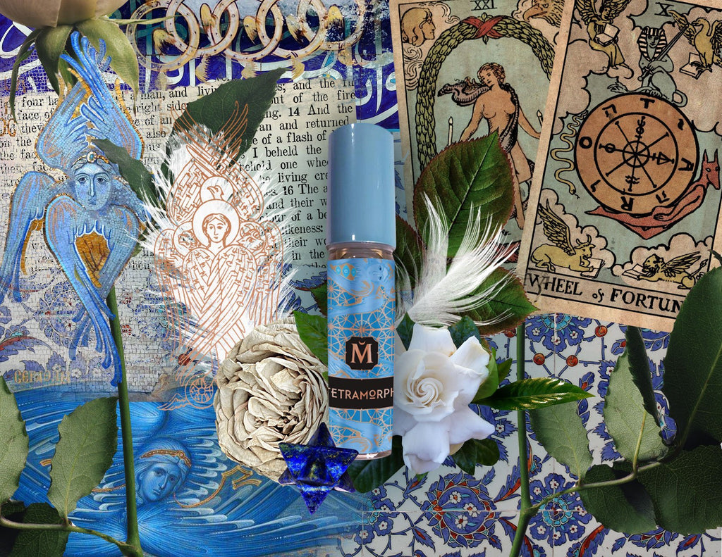 House of Matriarch - SEATTLE, WA - Natural, Organic, Vegan, Artisan & Niche High Perfumery *NEW* TETRAMORPH - Squaring the Scent Wheel