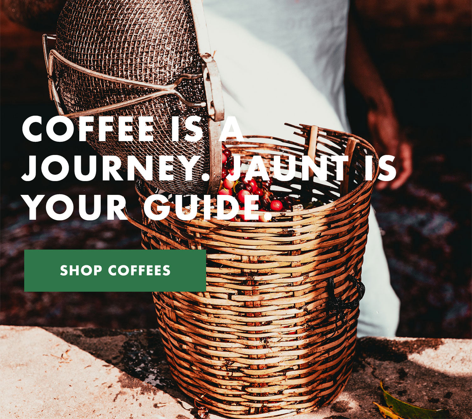 Jaunt Coffee Roasters
