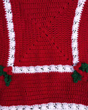 Holly & Berries Afghan & Pillow Crochet Pattern