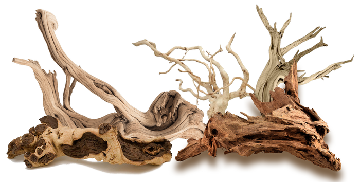 Driftwood in Aquariums - What You Should Know