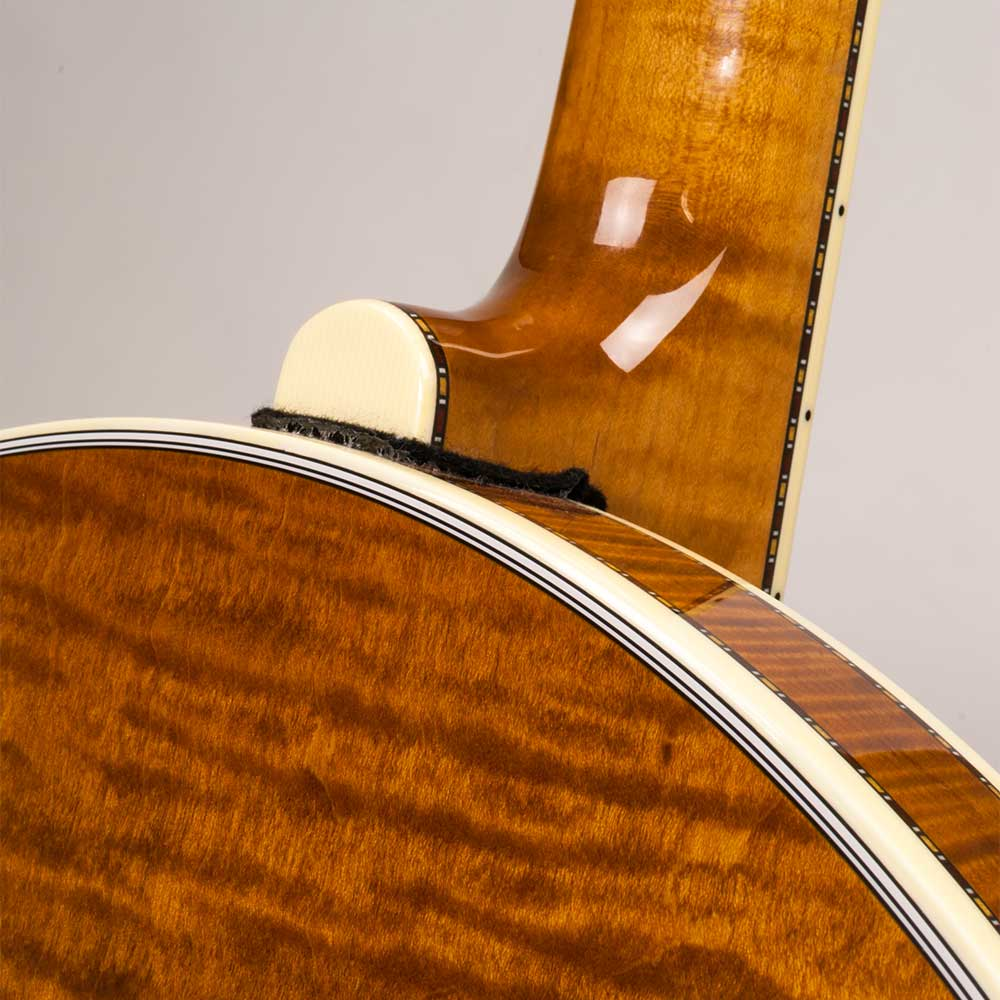 Deering Calico resonator back
