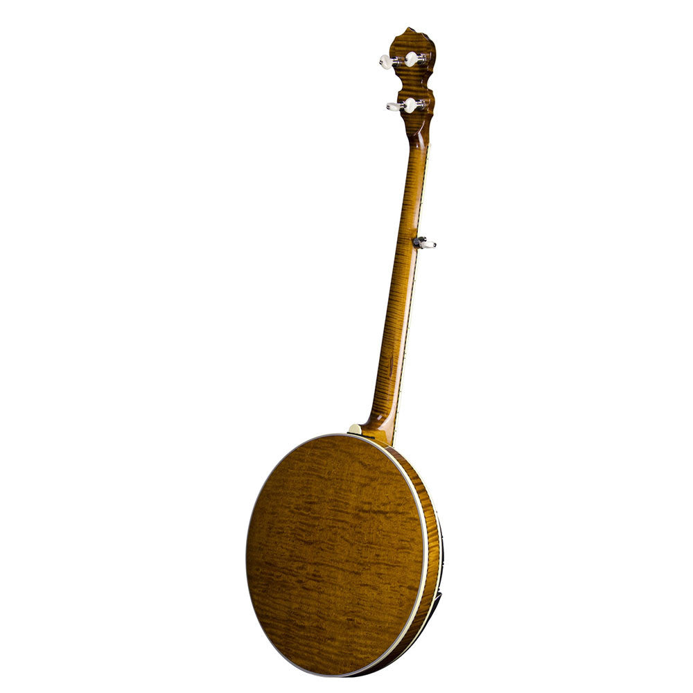 Deering Calico banjo back