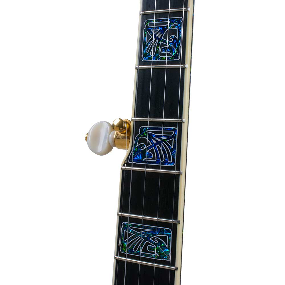 Tony Trischka Golden Clipper Banjo - neck front
