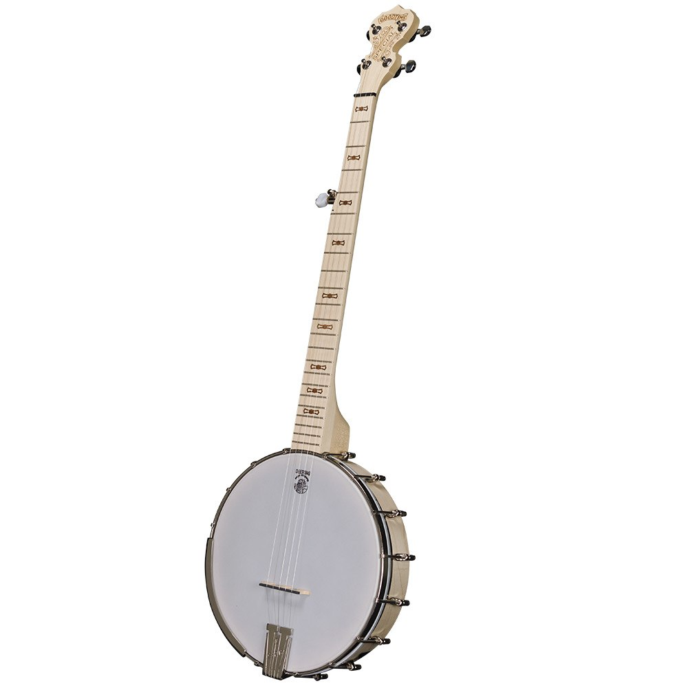 Goodtime Special Openback Banjo - front