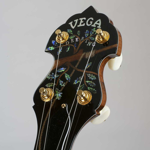 Vega Kingston Trio Tom Dooley Long Neck Banjo