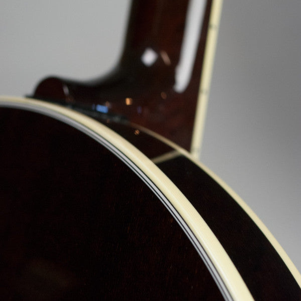 Tenbrooks Legacy Banjo - resonator back