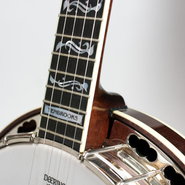 Deering Tenbrooks Saratoga Star banjo - pot and neck front
