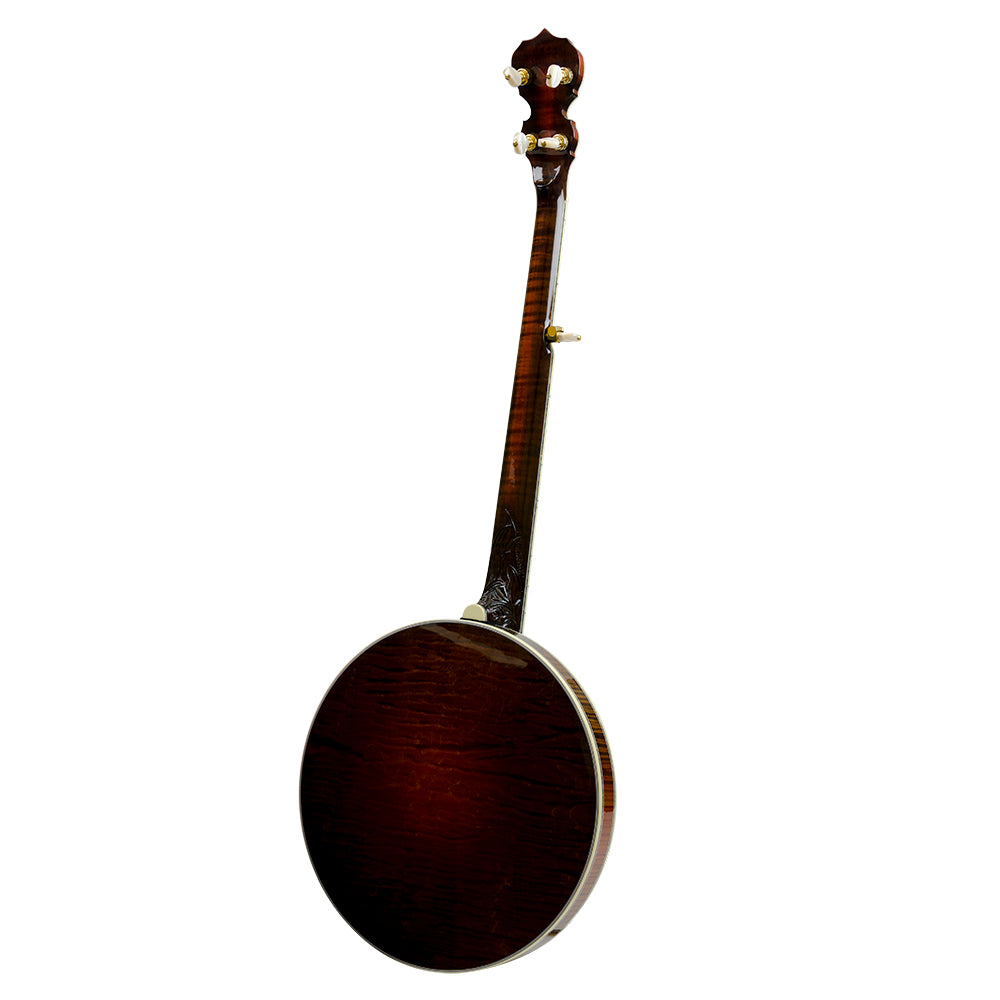 Deering Tree Of Life banjo - Back
