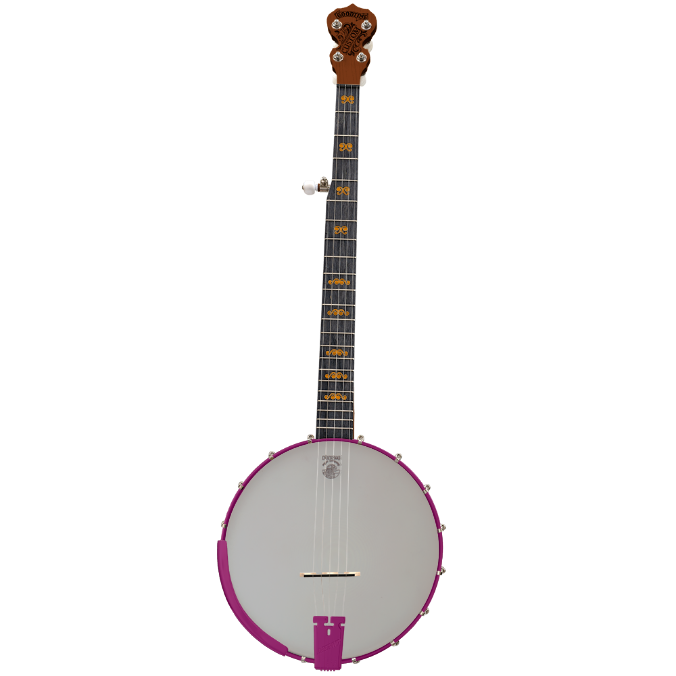 Custom Goodtime Banjo - Customer's Product with price 1518.00 ID GDzNPMzCUMV9caLTQyAWCEE1