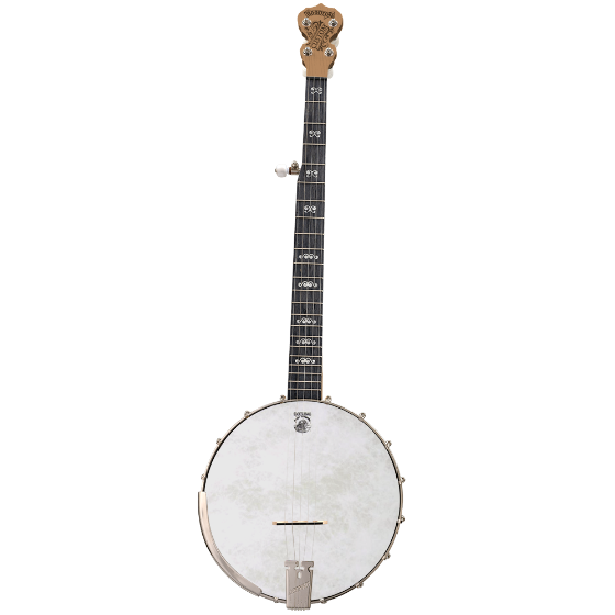Custom Goodtime Banjo - Customer's Product with price 1099.00 ID Lr1rX-eNOys2AJ5Q0zw5LguC