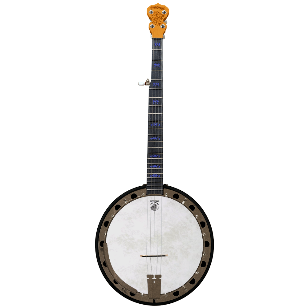 Custom Goodtime Special Banjo - Customer's Product with price 1619.00 ID Sta7Q3x1gU7sSUyI5g2yWgkx