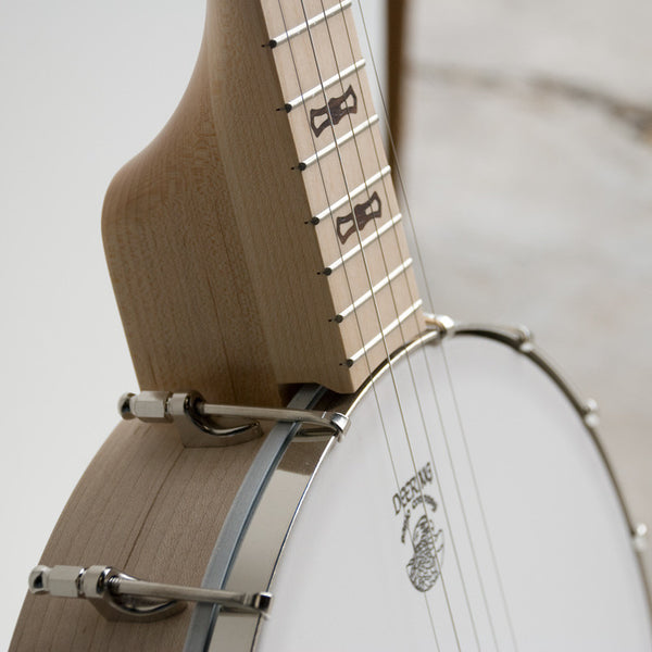 Deering Goodtime Parlor banjo - neck and pot