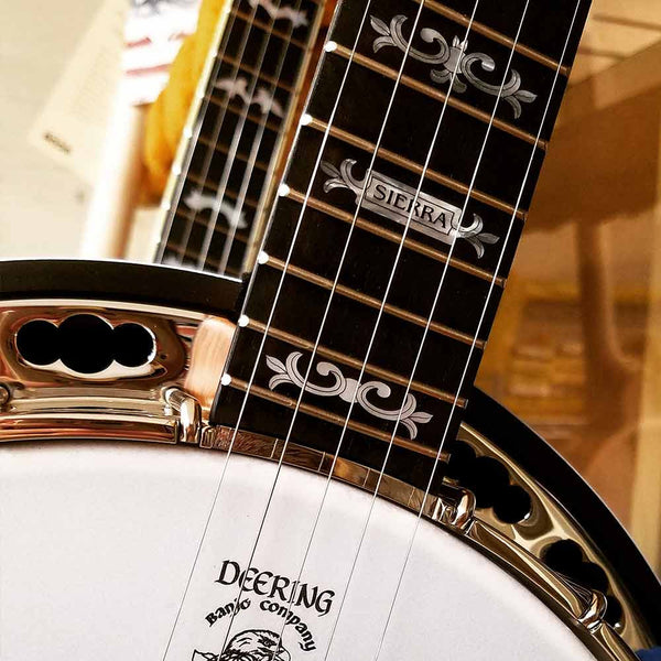 Deering Sierra banjo - neck and pot 2