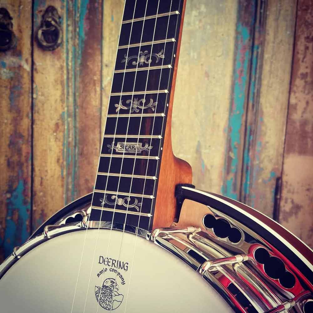 Deering Sierra Banjo neck and pot with wood background