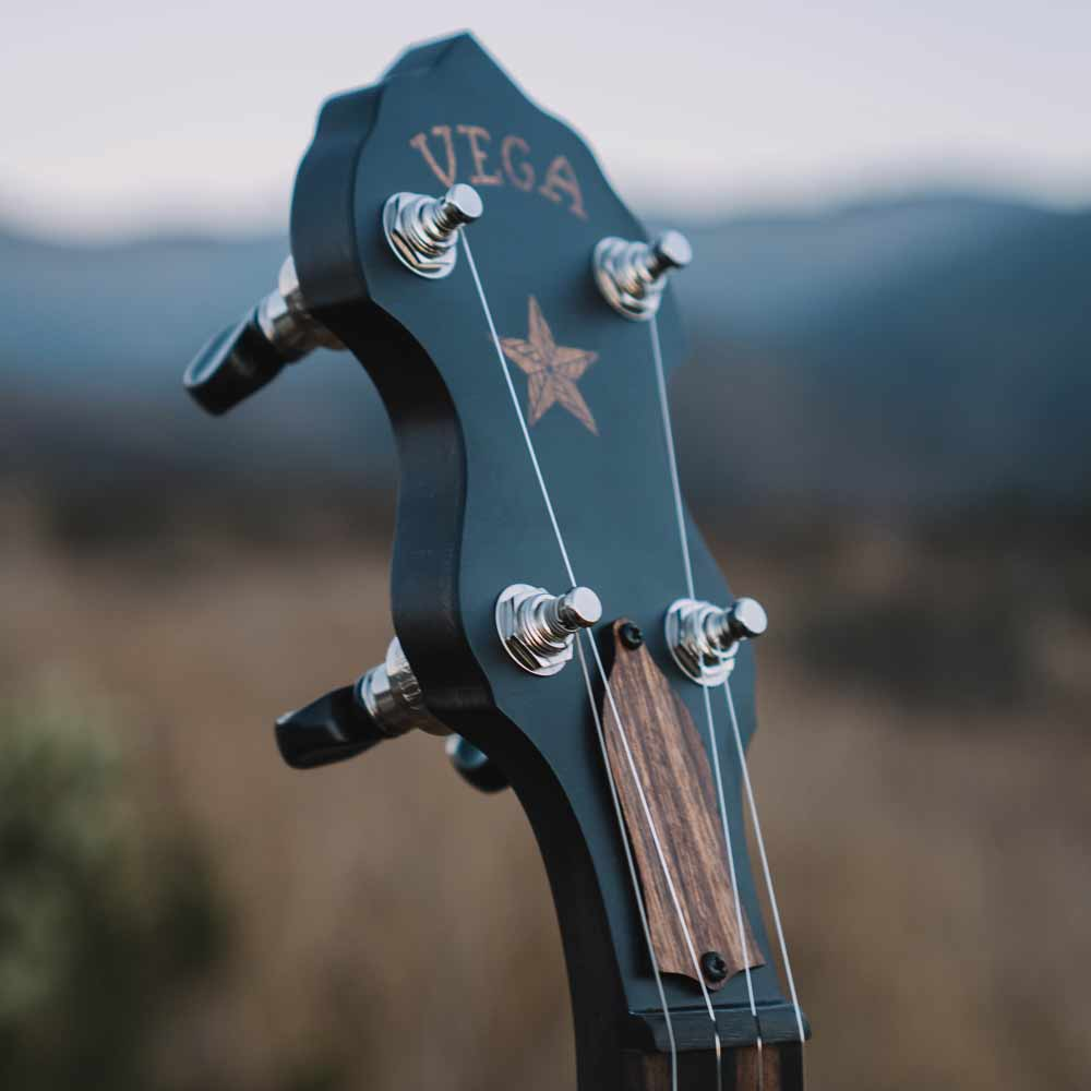Vega Vintage Star banjo - peghead mountains
