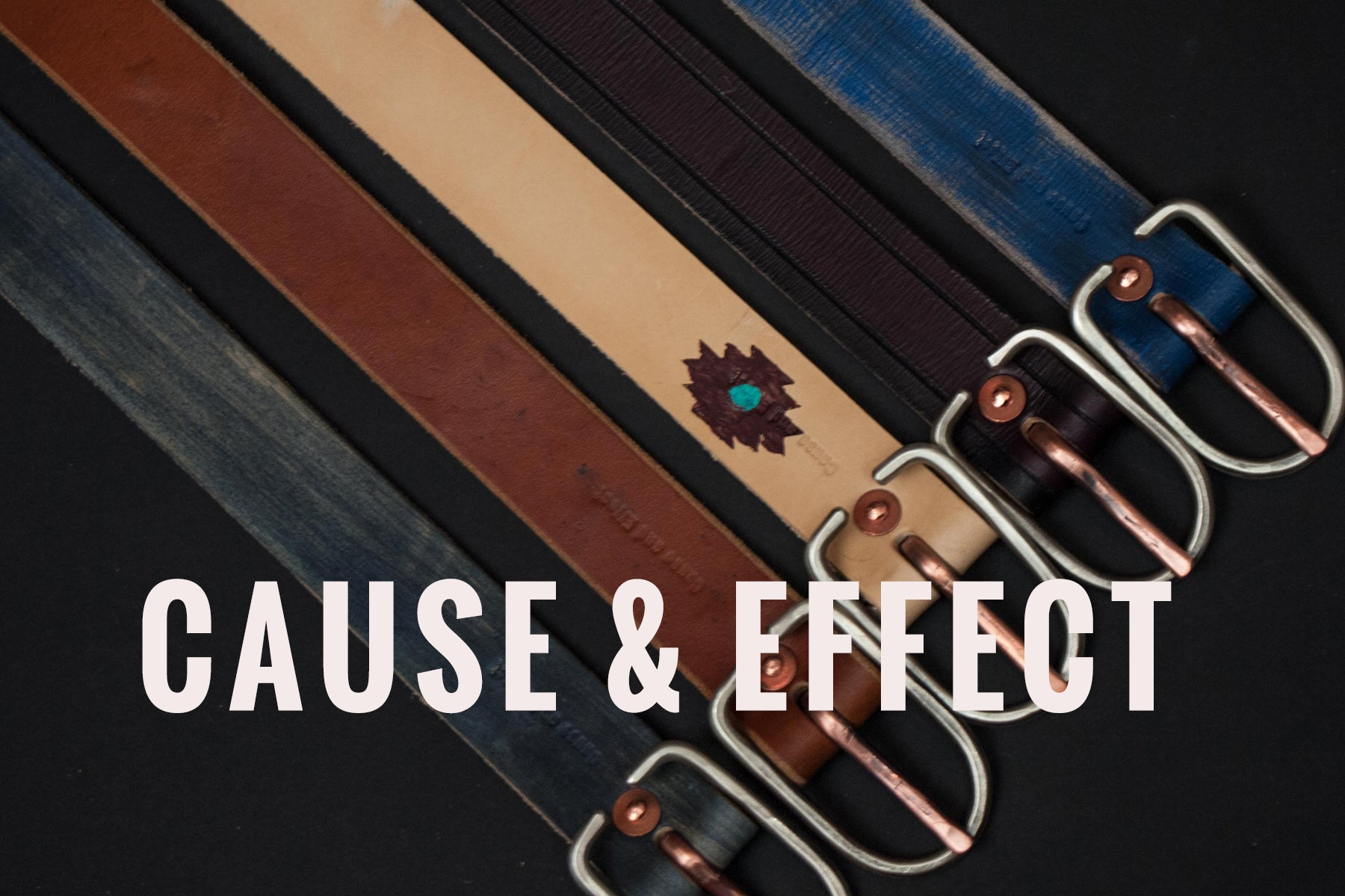 CAUSE & EFFECT AT THE LODGE