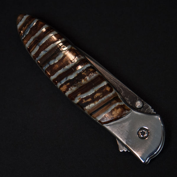 Santa Fe Stoneworks Woolly Mammoth Tooth Knife Natural with Kershaw Blade at The Lodge