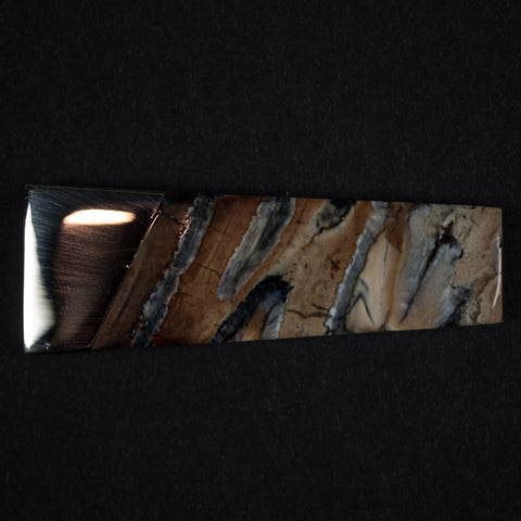 WOOLLY MAMMOTH TOOTH MONEY CLIP NATURAL - THE LODGE  - 1