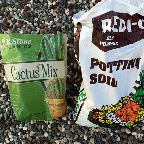 Organic cactus soil for succulents